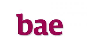 【スラング英語の教科書】bae(ベイ)の正しい意味と使い方