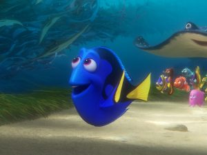 the-movies-eponymous-character-dory-is-a-forgetful-blue-tang-fish
