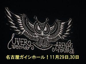 名古屋ガイシホール!UVERworldアリーナツアーのセトリ・レポ・ネタバレ