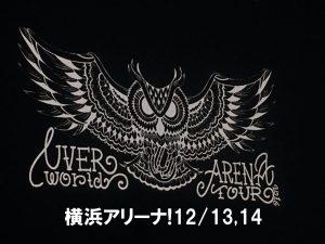 横浜アリーナ!UVERworldアリーナツアーのセトリ・レポ・座席表・ネタバレ感想